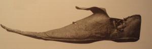 buty z czubkami